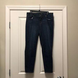 Denim - 1822 Dark Wash Jeans